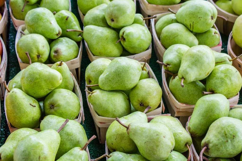 November market Report - Pears - GoKart